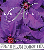 Kringle Sugar Plum Poinsettia